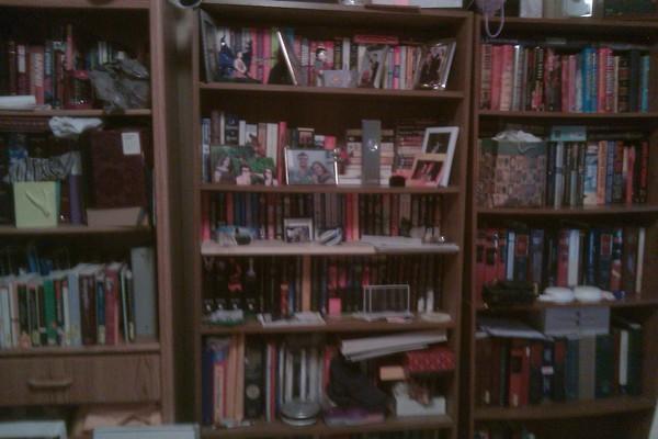 julie-bookshelf2