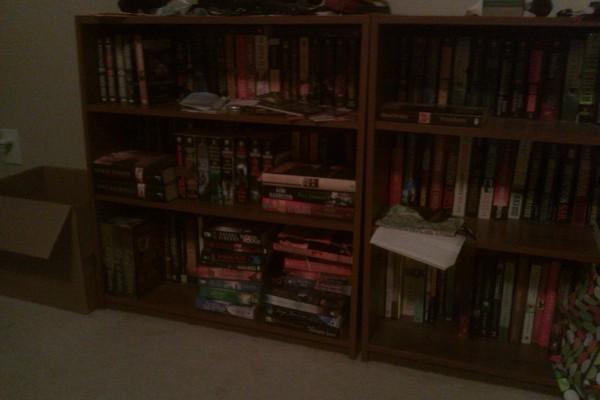 julie-bookshelf3