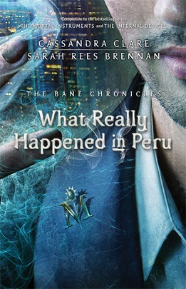 What Really Happened in Peru Review