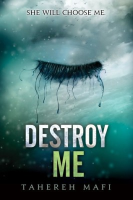 Destroy Me review